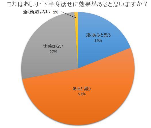 ヨガおしりダイエットアンケート円グラフ